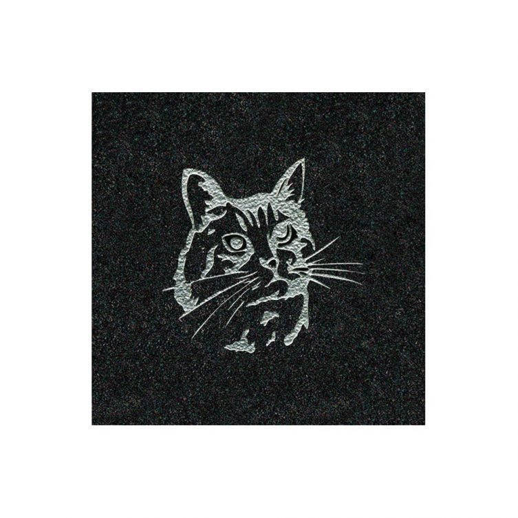 Silver Painted Cat image 1