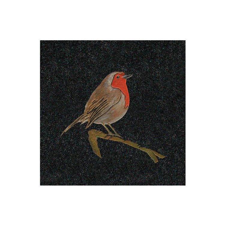 Painted Robin image 1