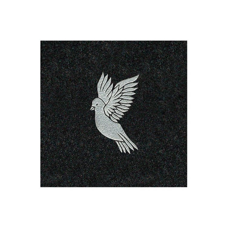 Dove in Flight image 1