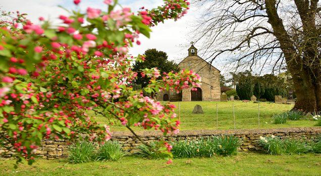flowers in churchyard